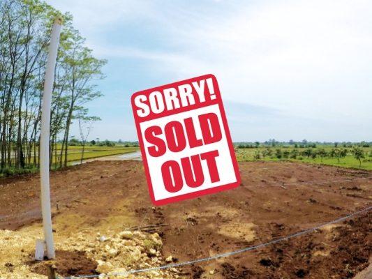 kav krasak 3 sold out